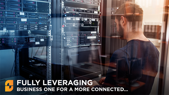 Fully Leveraging SAP Business One for a more connected Business